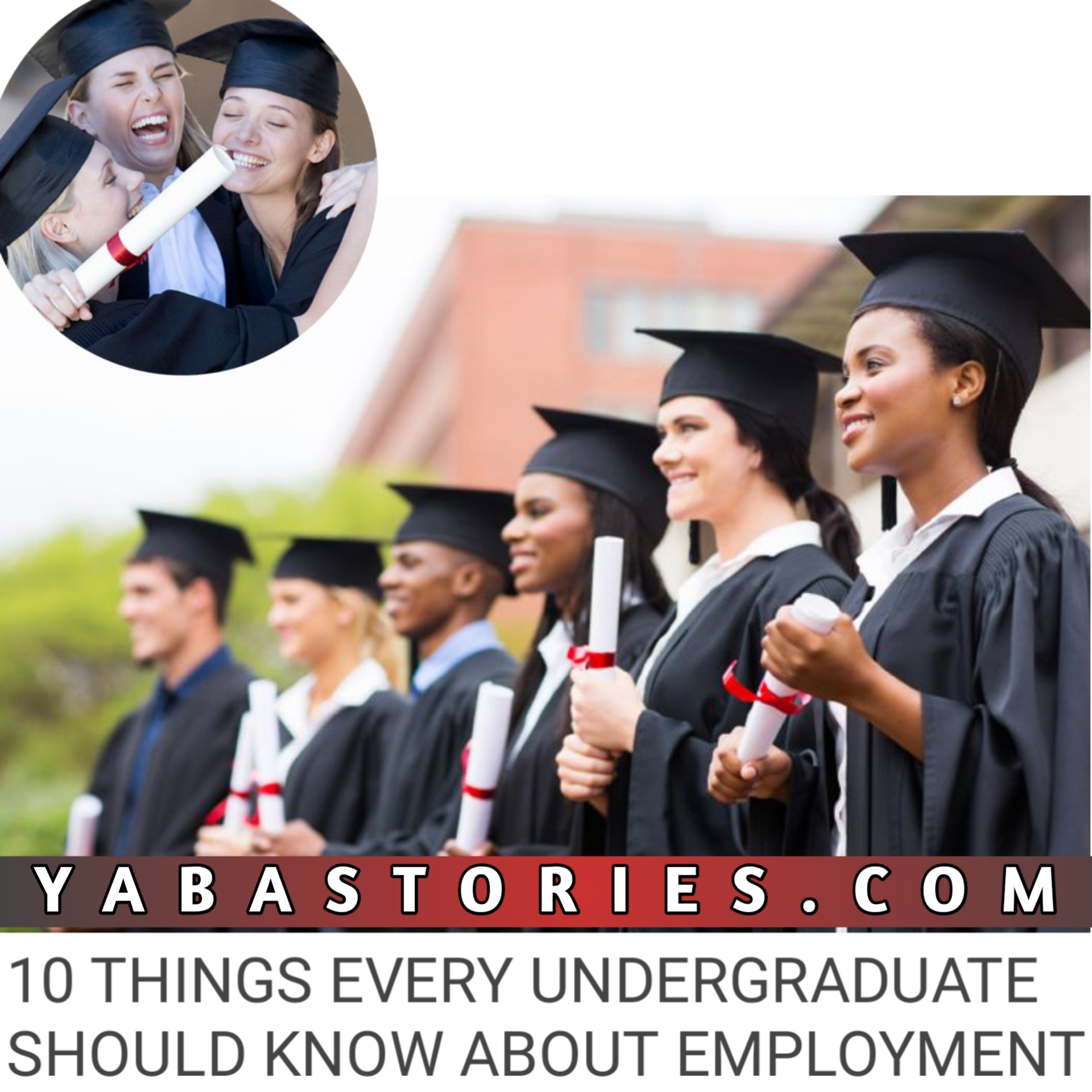 Things Undergraduate Should know about employment